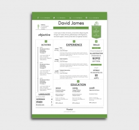 finest cv template - resume - without profile picture - green