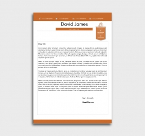 finest cv template - cover letter - without profile picture - orange