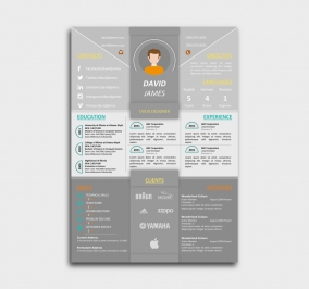 impress cv template - resume - gray