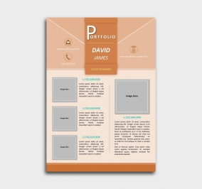 impress cv template - portfolio - orange