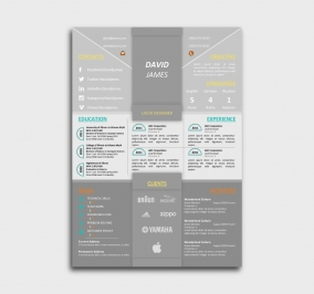 impress cv template - resume - without profile picture - gray
