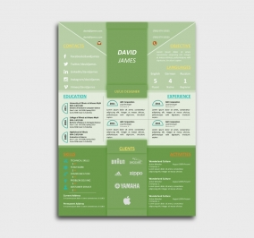 impress cv template - resume - without profile picture - green
