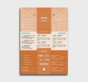 impress cv template - resume - without profile picture - orange