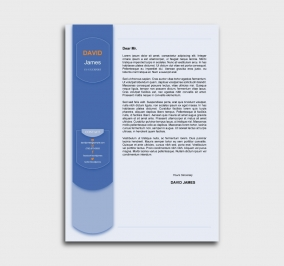 exceptional  cv template - cover letter- without profile picture - blue