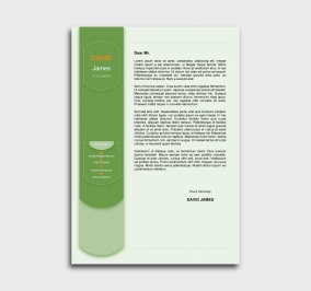 exceptional  cv template - cover letter- without profile picture - green