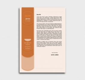 exceptional  cv template - cover letter- without profile picture - orange