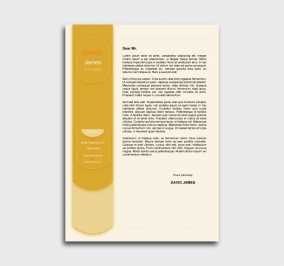 exceptional  cv template - cover letter- without profile picture - yellow